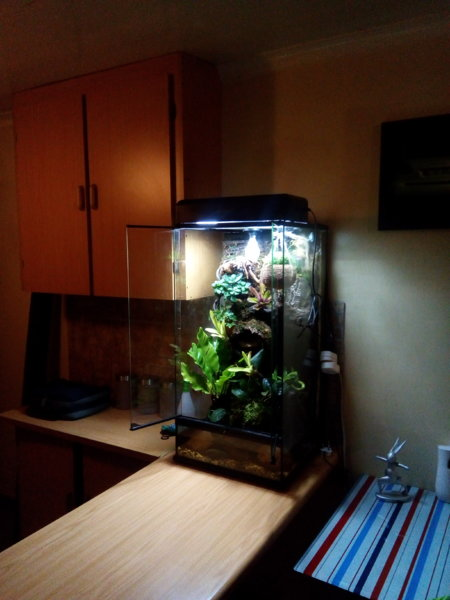 For Sale Exo Terra Paludarium Tropical Aquariums Sa