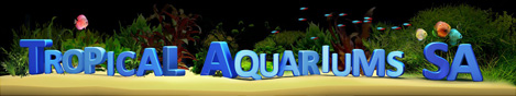 Tropical Aquariums South Africa